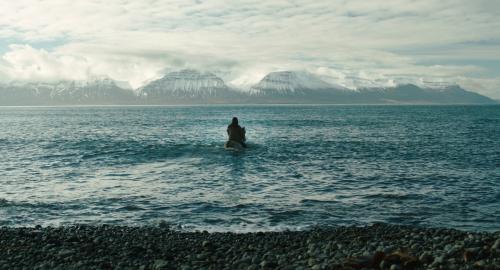 Image du film Des chevaux et des hommes