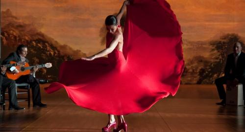Image du film Flamenco Flamenco