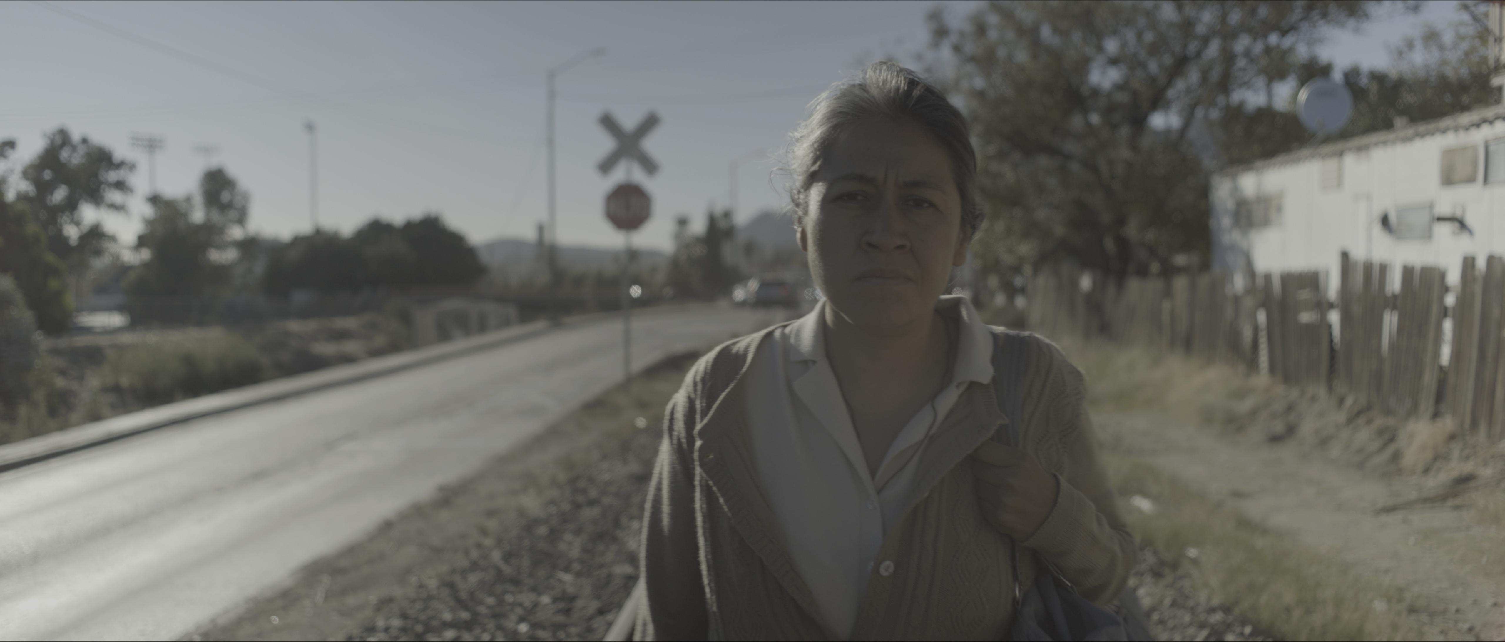 Image du film Sans Signe Particulier